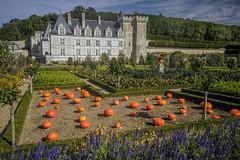 Schloss Villandry Loire II