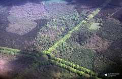 Photo of Rushmore Park, Cranborne Chase, Wiltshire