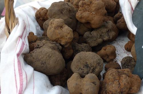 aups-truffes