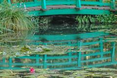 Garten  von Monet Seerosenbrücke
