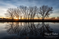March 7, 2021 - Sunrise reflections. (Tony's Takes)