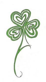 Irish Oral for Leaving Cert