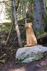 Sculpture en bois de sanglier @ Le Grand-Bornand