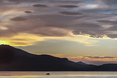 Lago Maggiore im Morgenlicht II, Piemont, Italien