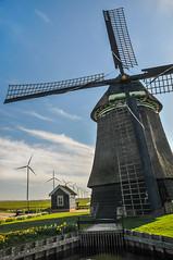 Windmühle Niederlande bei Amsterdam IV