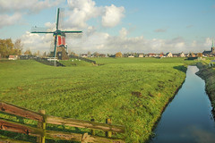 Windmühle Niederlande bei Amsterdam I
