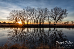 Watery reflections at sunrise