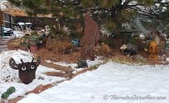 March 13, 2021 - Snow begins accumulating. (ThorntonWeather.com)