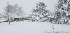March 14, 2021 - Snowy scene. (ThorntonWeather.com)