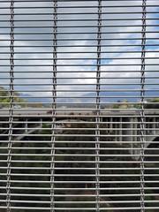 Colorado Street Bridge - Doka Barrette Mesh