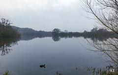 Photo of Stocker's Lake in winter