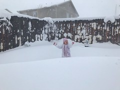 March 15, 2021 - The joys of a child in the snow. (Jessica Fey)