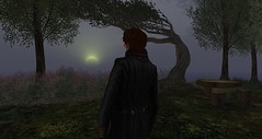 Sunrise Thru the Mists in Rosehaven