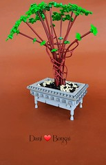 This is my version of Lego bonsai for my friend Daniela