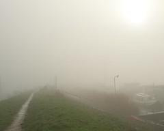 Fog series I