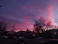 March 11, 2021 - A gorgeous pastel sunrise. (Teddy Williams)