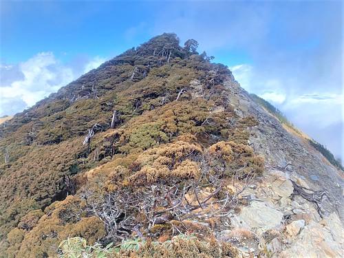 阿丹南湖登山6
