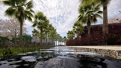Water mirror with palm trees