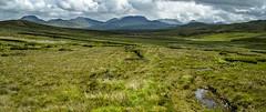 Moorlandschaft II Connemara, Irland