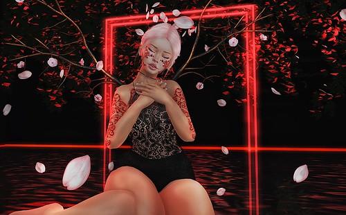 Dakiti Broken Sakura Rose image