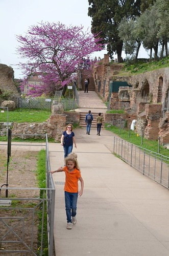 On The Palatine Hill