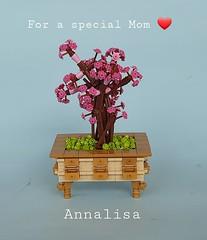Lego bonsai for a special Mom ❤