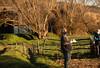 Taller de Introducción a la permacultura - Fundación cerezales
