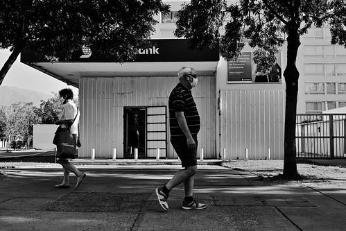 Banco en conserva / Canned bank 01