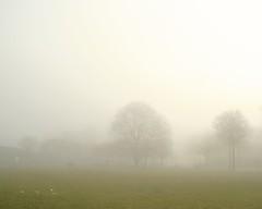 Fog Series IV