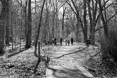 Photo of Woodhall Spa Walk-2