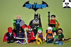 The Bat-Family & Villains Vol. 1: Batman