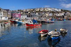 Photo of Vibrant Harbour