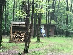 SRO Bear shed and wood lot
