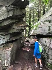 Rickets Glen split stone