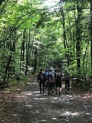 Rickets Glen hike