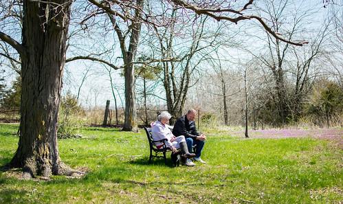 Relaxing by Purple Meadows