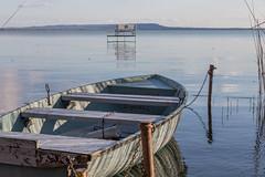 Balaton lake side