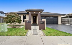 19 Judith Wright Street, Franklin ACT