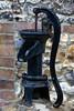 Pump in Iron
