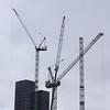 The Sky Cranes