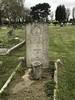 Havering - Romford Cemetery - Shearman - 05465