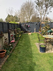 Photo of My Garden