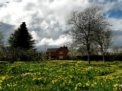 Photo of Hoveton Hall and Gardens 11 April 2021