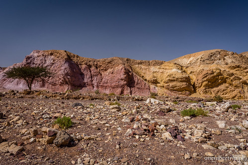 180305-4690-Red Canyon 13