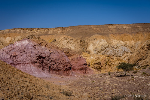 180305-4689-Red Canyon 13