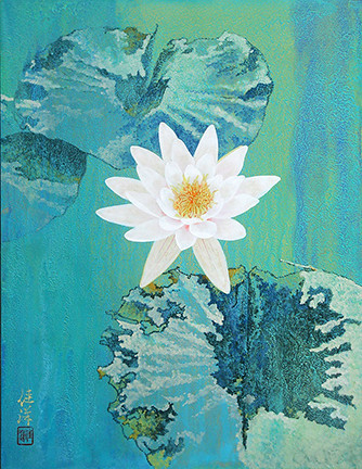 Pygmy water-lily