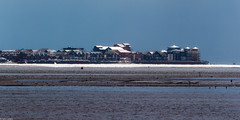 Photo of Shimmering Exmouth