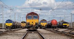 Photo of DB Cargo in pole position, Kingmoor Yard.