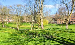 Photo of Spring at Winckley Square