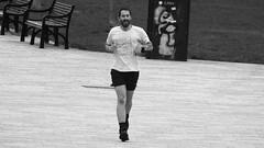 Photo of The Runner
